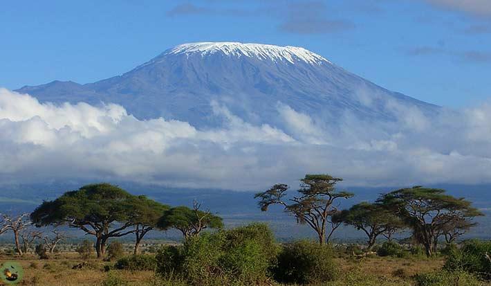 http://www.awlandsafaris.com/images/Articles/Mt-Kilimanjaro-Tansania.jpg